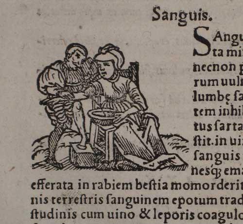 D.2.15.p.116